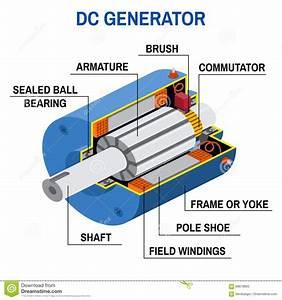 Dc Generator Cross Diagram  Stock Vector