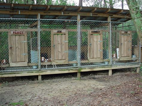 outdoor kennel kennels southmississippirabbithunting my