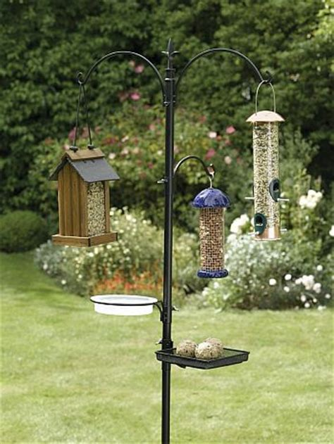 best backyard bird feeders blog