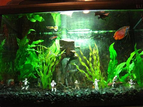wars aquarium ornaments exemple d 233 coration aquarium wars