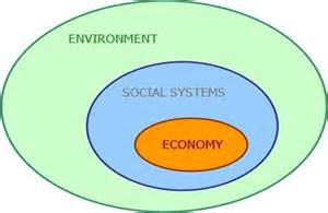 Sustainability Environment Definition