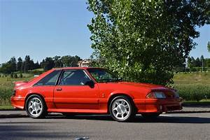 1993 Mustang Cobra, 331 Stroker, Procharger - Classic Ford Mustang 1993 for sale