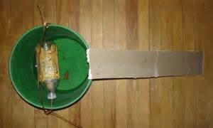 Homemade Rat Trap Bucket