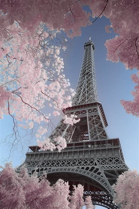 paris eiffel tower david clapp poster sold  europosters