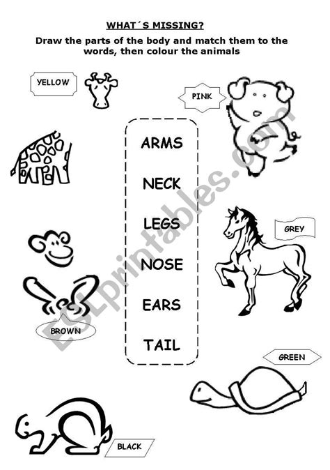 parts   body whats missing esl worksheet  lamejor