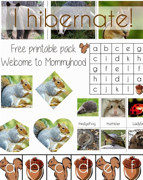 quot i hibernate quot free printable pack from welcome to 906 | a8bb973fee752ddbca62364f0cd3d570