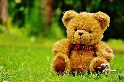 Teddy Bear Picnic Katy Story Grass