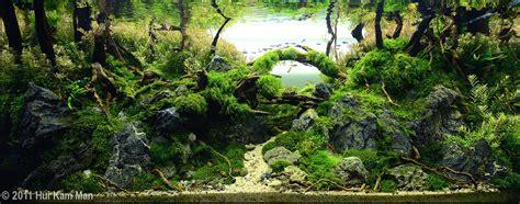 design aquarien 2011 aga aquascaping contest 147