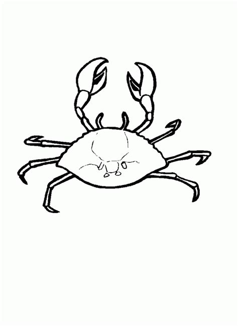 crab colors free printable crab coloring pages for