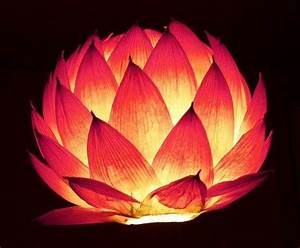 DIY: Lotus and Paper lanterns - Art & Craft Ideas
