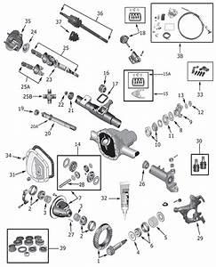 Wheel Bearings Maybe