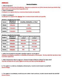 Domains & Kingdoms Classification Worksheet Tpt