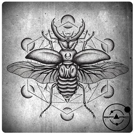 Images For > Scarab Beetle Tattoo  Tattoos Pinterest