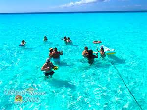 party rent cozumel snorkel and cielo tour snorkel in cozumel el