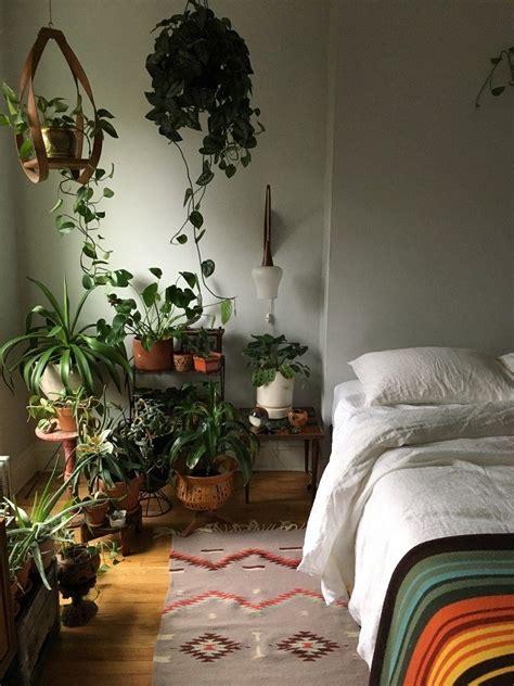 tricks  growing happy houseplants  dark apartments