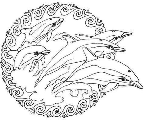 Kleurplaten Dieren Dolfijnen by Dolfijnen Mandala Kleurplaten Mandala Kleurplaten