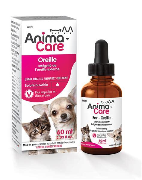 infection oreille chien traitement maison infection oreille chien traitement maison avie home