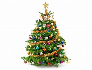 Weihnachtsbaum Mit Rosa Kugeln : fotos neujahr christbaum kugeln feiertage ~ Orissabook.com Haus und Dekorationen