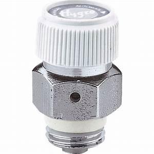 Purgeur D Air Automatique : purgeur d 39 air automatique disque de fibre m le 8x13 ~ Dailycaller-alerts.com Idées de Décoration