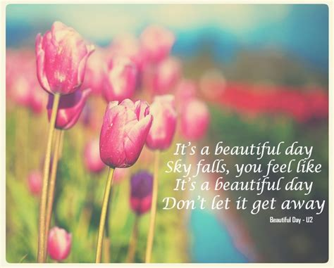 beautiful sunny day quotes quotesgram