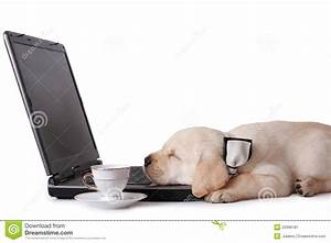 Tired At Work Stock Image - Image: 22996181
