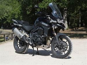 Cote Argus Gratuite Moto : argus moto triumph tiger cote gratuite ~ Medecine-chirurgie-esthetiques.com Avis de Voitures