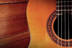 Gitarre Selber Bauen : gitarre formen und arten ~ Watch28wear.com Haus und Dekorationen