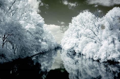 infrared photography pics