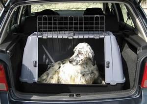 Grande Cage Pour Chien : cage de transport pour chien small ~ Dode.kayakingforconservation.com Idées de Décoration