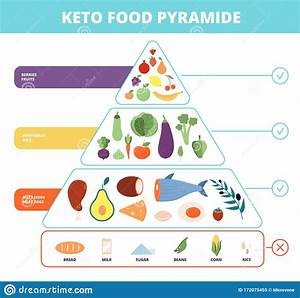Keto Food  Nutrition Pyramid  Low Carb Foods  Healthy