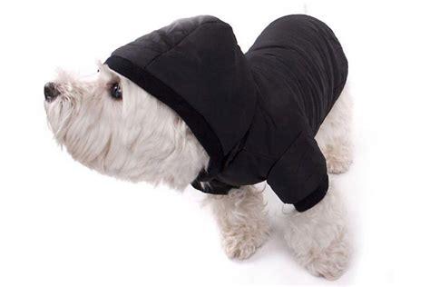 hundemantel schwarzer mantel fuer hunde guenstig kaufen