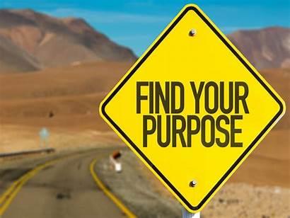 Purpose Lifelabs