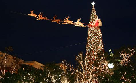 the grove s christmas tree lighting