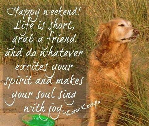 Dogs Happy Memorial Day Weekend