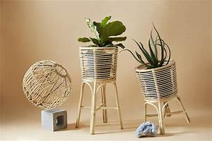 Plant, Stands, Square, Weave