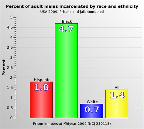 race   united states criminal justice system wikipedia