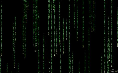 Matrix Animated Wallpaper - animated matrix wallpaper windows 10 57 images