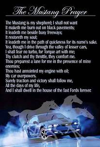 I always wanted a Pony!! image by Michelle Windham | Mustang cars, Mustang, Mustang quotes