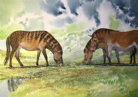 megafauna tarpan animals end evolution