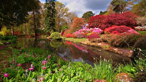 images of gardens home fun family days out in hshire exbury gardens
