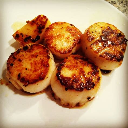 pan seared scallops pan seared scallops foooddd pinterest