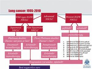 Lung Cancer Treatment U2014suggested Pathway