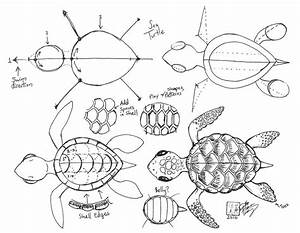 How To Draw A Cute Baby Turtle