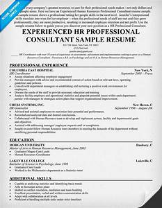 Sample cover letter sample resume experienced professional for Professional resume consultant