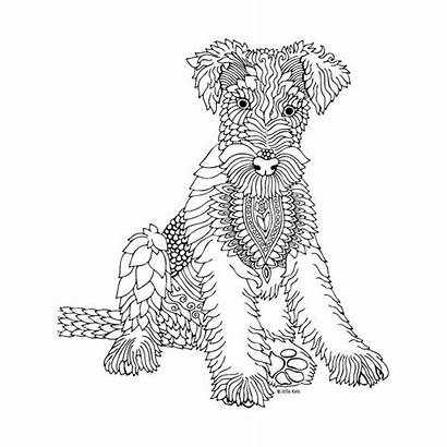 Coloring Pages Adults Adult Printable Dog Mandala