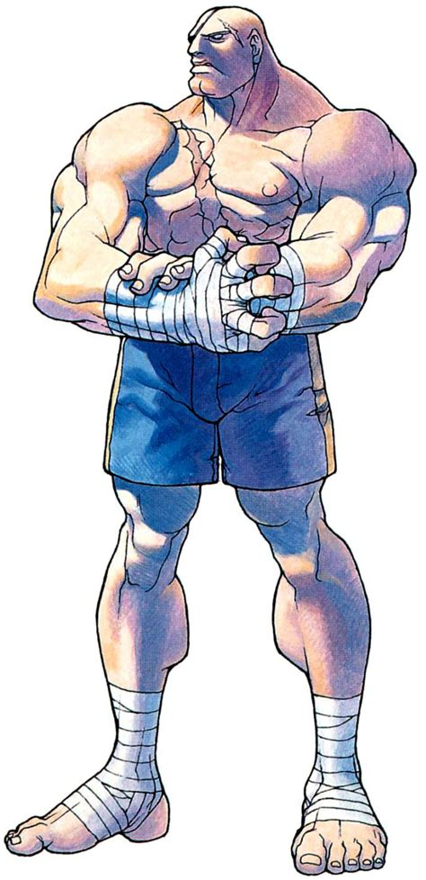 Fan Art Cosplays Official Art And Infos About Sagat