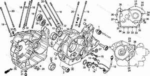 Honda Motorcycle 1994 Oem Parts Diagram For Crankcase