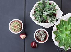 Pflanzen Die Wenig Wasser Brauchen : selfmade diy elbmadame ~ Frokenaadalensverden.com Haus und Dekorationen