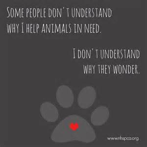 Image result for black animals need help
