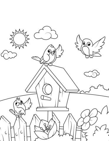 birds   birdhouse coloring page  printable